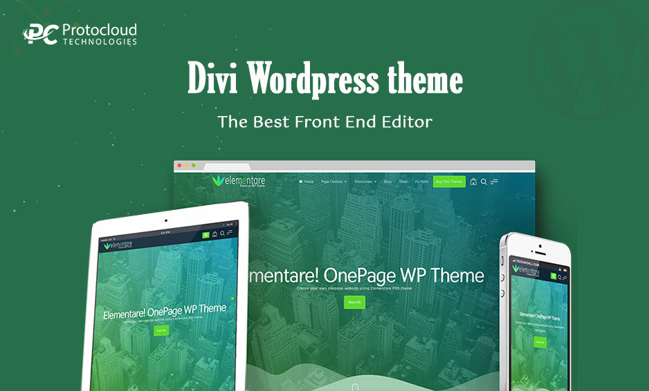 Divi WordPress Theme An All Purpose Theme