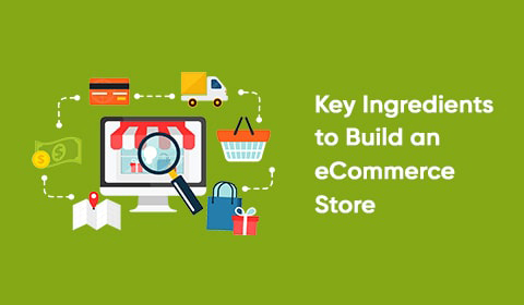 Key Ingredients to Build an eCommerce website