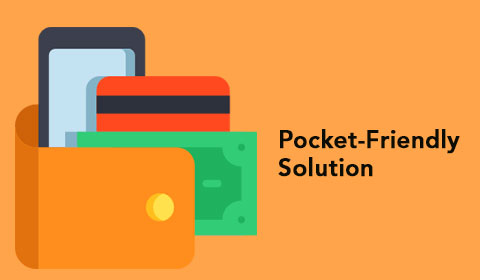 Pocket friendly solution best mobile app development company